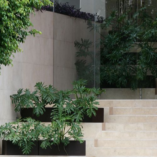 Jardineras curvas macetas de fibra de vidrio meue - Tipos de jardineras ...