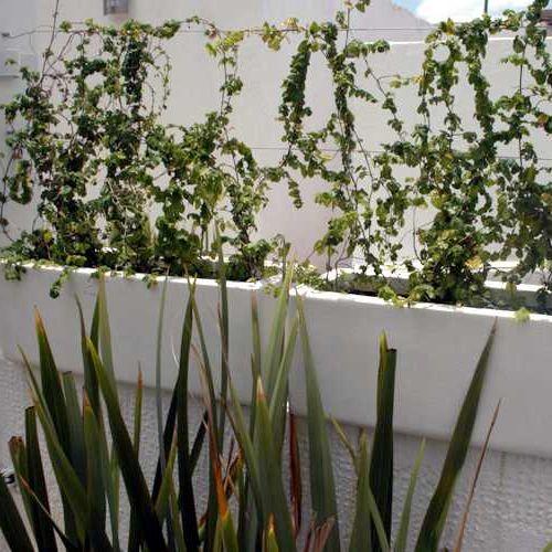 Jardineras rectas macetas de fibra de vidrio meue - Jardineras de fibra de vidrio ...