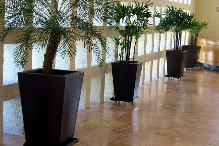 Macetas minimalistas meue for Plantas para macetas grandes de exterior